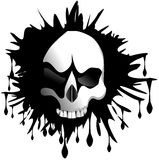 Isolated skull in spot Royalty Free Stock Photo