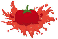 Isolated Smashed Juicy Tomato with some Seeds around it, Vector Illustration Stock Photography