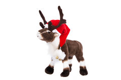 Isolated soft toy: Reindeer Rudolph with red christmas hat. Royalty Free Stock Photo