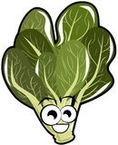 Isolated spinach beet cartoon. Illustration representing a cartoon version of a spinach beet. A nice idea to talk about this vegetable Stock Photos