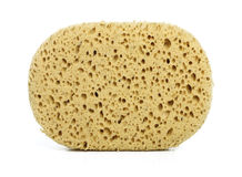 Isolated sponge Royalty Free Stock Photo