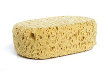 Isolated sponge Royalty Free Stock Image