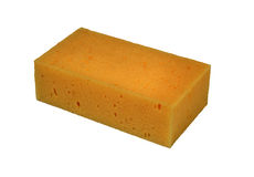 Isolated sponge with path Royalty Free Stock Image