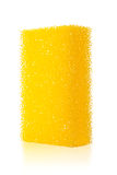 Isolated sponge with shallow DOF Royalty Free Stock Photography