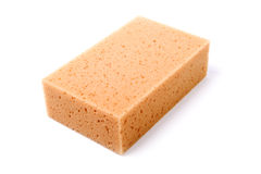 Isolated sponge Royalty Free Stock Photography