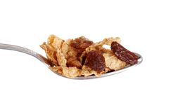 Isolated spoonful of bran and raisin cereal Royalty Free Stock Image