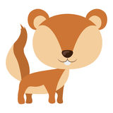 Isolated squirrel cartoon design Stock Image