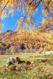 Isolated stone and an autumnal panorama in the Alps Stock Images