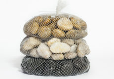 Isolated stone. Isolated river stone in net Stock Image