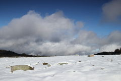 Isolated stone in a snowy landscape in Pyrenees Royalty Free Stock Image