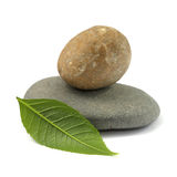 Isolated stones with leaf. Stones with leaf on a white background Stock Photo