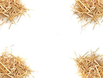 Isolated Straw. Dry hay. Mock up Stock Photos