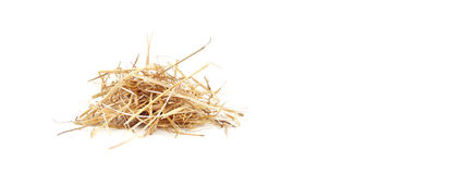 Isolated Straw. Dry hay. Mock up Royalty Free Stock Photography