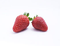 Isolated strawberries Stock Photography