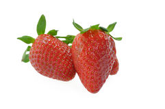 Isolated Strawberries. On a white background Stock Photo