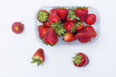 Isolated strawberries. Royalty Free Stock Photo