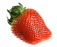 Isolated strawberry stock photos