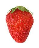 Isolated strawberry royalty free stock photo