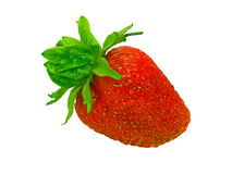 Isolated strawberry Royalty Free Stock Image