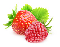 Isolated strawberry and raspberry Royalty Free Stock Photo