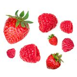 Isolated Strawberry and Raspberry Macro. Falling  Various fresh. Berries isolated on white background, close up Royalty Free Stock Images