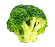 Isolated studio shot of fresh Australian broccoli floret Stock Photography