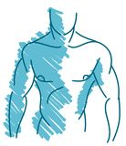 Isolated Stylized muscular man in blue Stock Photography