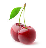 Isolated sweet cherries Stock Photography