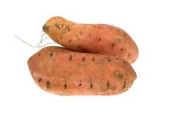 Isolated sweet potato Stock Image