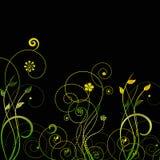 Isolated swirls vector Stock Image