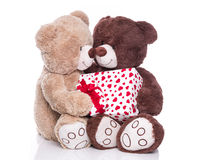 Isolated teddy bears with a gift box for valentine. Two isolated teddy bears in love isolated with a red present with hearts for valentine Royalty Free Stock Image
