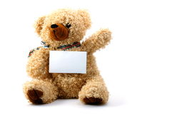 Isolated teddy with blank sheet Royalty Free Stock Photography