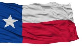 Isolated Texas Flag, USA state stock illustration