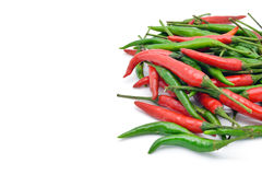Isolated Thai chili herb Royalty Free Stock Photos