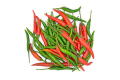 Isolated Thai chili herb Royalty Free Stock Images
