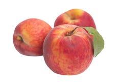 Isolated Three riped peaches Stock Photo