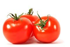Isolated tomato Stock Photography