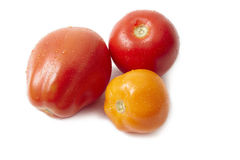 Isolated tomatoes Stock Photos