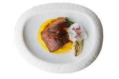 Isolated top view of pan seared trout. served with yellow sauce, foam and roasted sliced onion on curved white plate Stock Image