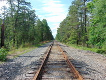 Isolated Train Tracks in Woods. Set of isolated train tracks in the woods stock image