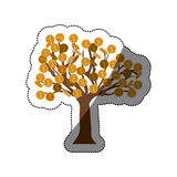 Isolated tree of coins design. Tree of coins icon. Money financial item commerce market and buy theme. Isolated design. Vector illustration Stock Photo