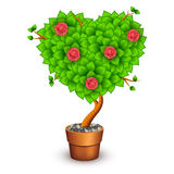 Isolated tree with flowers in clay pot. Form of Stock Photo