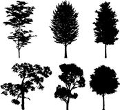 Isolated trees 16. Silhouettes. Set isolated trees - 16. Silhouettes. Silhouettes of  trees isolated on a white background Stock Image