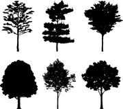Isolated trees 18. Silhouettes Royalty Free Stock Image