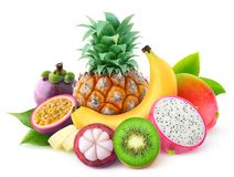Isolated tropical fruits stock photography