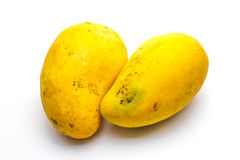 Tropical mango. An isolated tropical mango on white background Royalty Free Stock Photography