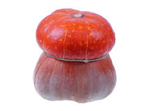Isolated Turban Squash Stock Photos