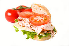 Isolated Turkey Sandwich Royalty Free Stock Photo