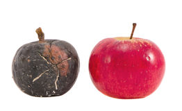 Isolated two apple - nature time concept Stock Photo