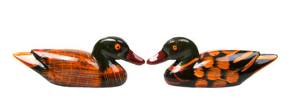 Isolated two ducks face to face Stock Photos
